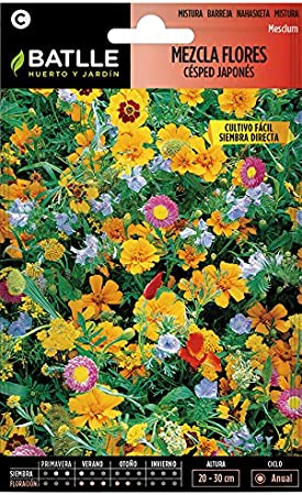 Semillas de Flores - Mezcla de Flores césped japonés - Batlle: Amazon.es: Jardín
