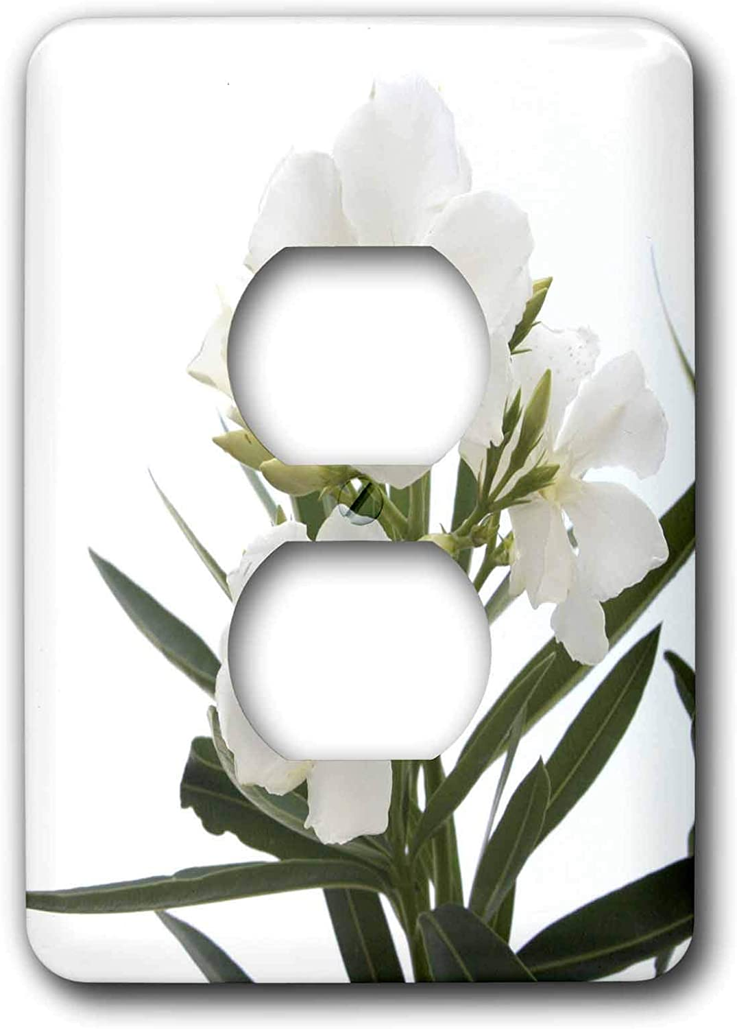 3drose Lsp 46838 6 Oleander White White Flower Tree Oleander Blossom Tropical Plant Buds 2 Plug Outlet Cover Outlet Plates Amazon Com