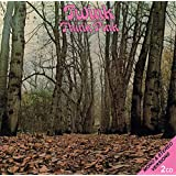 Think Pink ( 2 cd set )