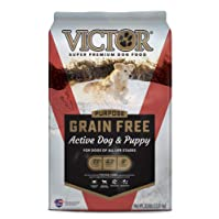 Victor Super Premium Dog Food for Active Dog and Puppy