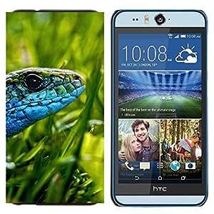EJOOY---Cubierta de la caja de protección para la piel dura ** HTC Desire Eye M910x ** --Lagarto verde hierba Sun azul de la serpiente