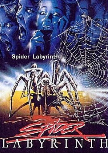 Spider Labyrinth -