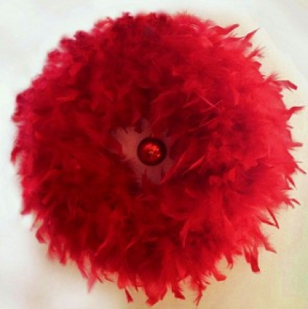 Red Feather Christmas Wreath 23''