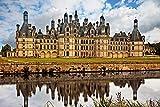D-Toys Chateau de Chambord Jigsaw Puzzle, 1000-Piece