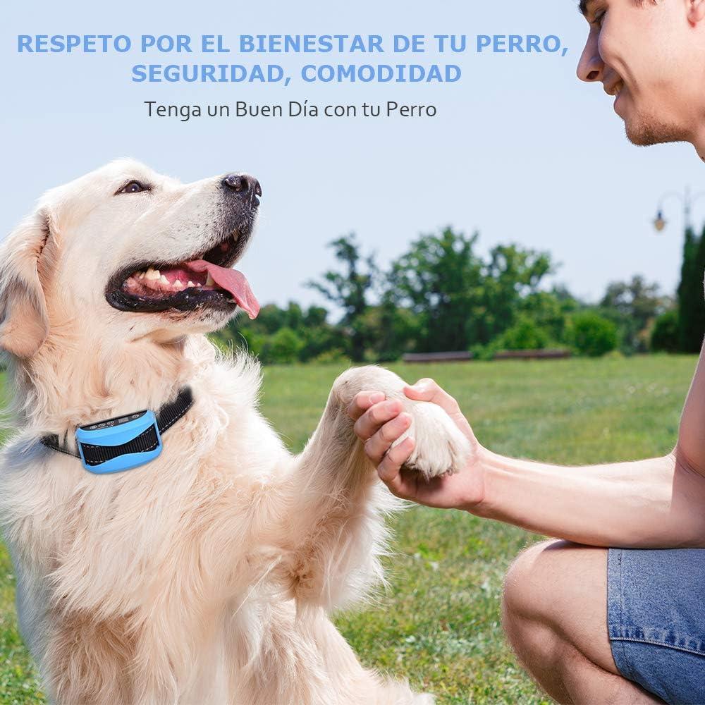 A+ Trainer Collar Antiladridos para Perros, Collar Ladridos Perro ...