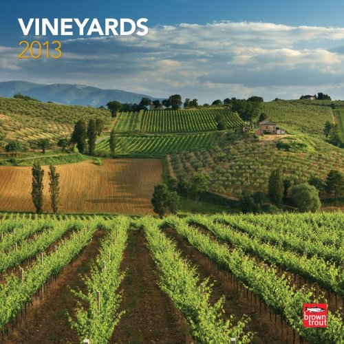 Vineyards 2013 - Weinberge - Original BrownTrout-Kalender