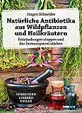 Natürliche Antibiotika aus Wildpflanzen und Heilkräutern: Entzündungen stoppen und das Immunsystem stärken