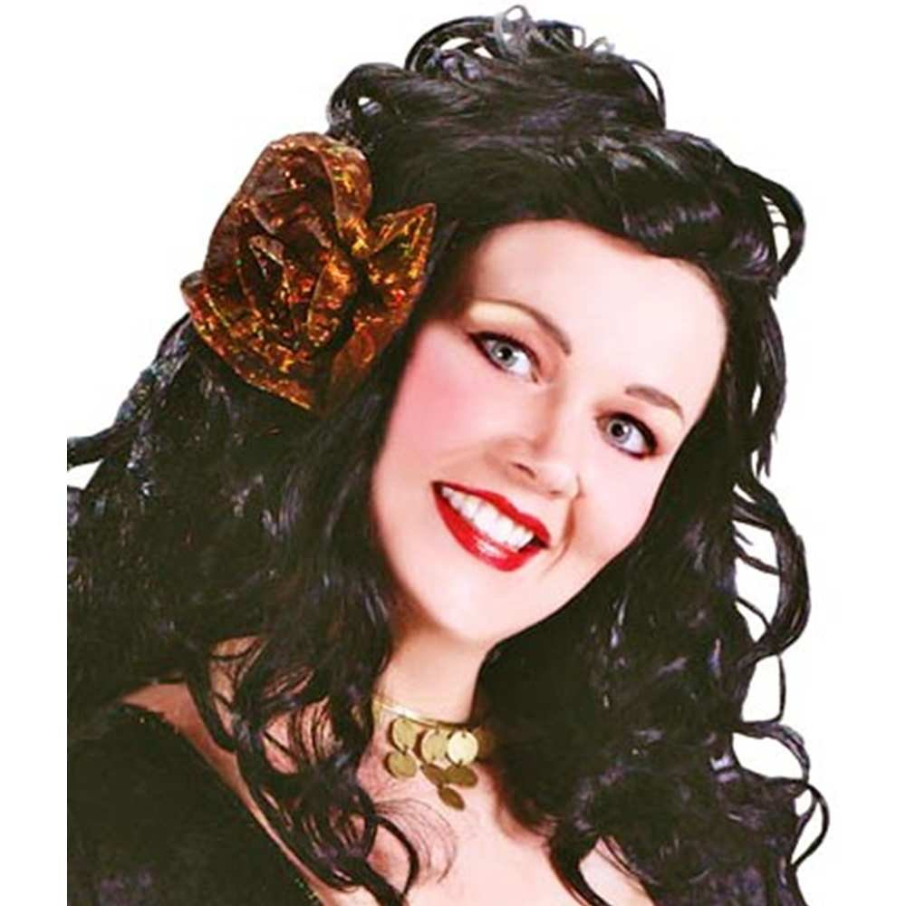 Amazon.com: Adulto Gypsy Rose – Plus Size Costume – Womens ...