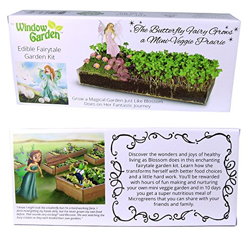 Edible Fairy Garden Kit with an Enchanting Fairytale. Create a Nutritious Mini Veggie Prairie Just like Blossom does on her Fantastic Journey and Learn about Smart Food Choices. Educational and Fun!