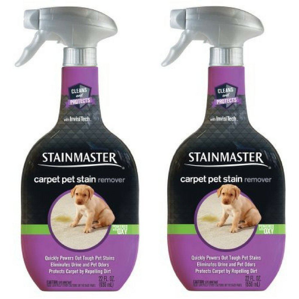 STAINMASTER Carpet Pet Stain & Odor Remover Cleaner, 22 Ounce (Pack of 2)