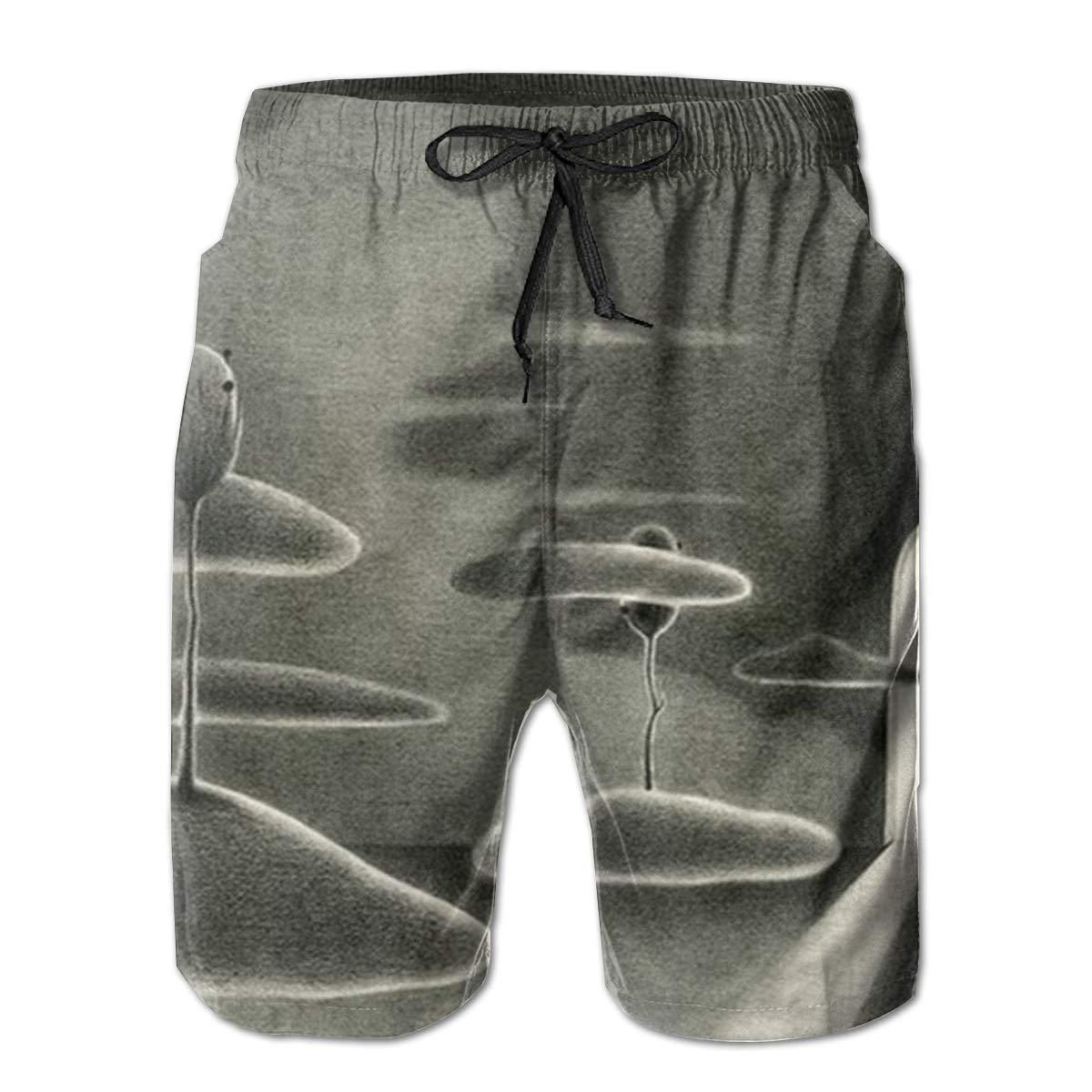 Surprised Cat Men/â/€s Beach Board Shorts Quick Dry Swim Truck Shorts