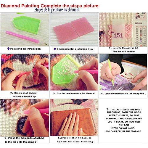 Diamond Painting Set Bild Diamant Malerei Stickerei Handarbeit