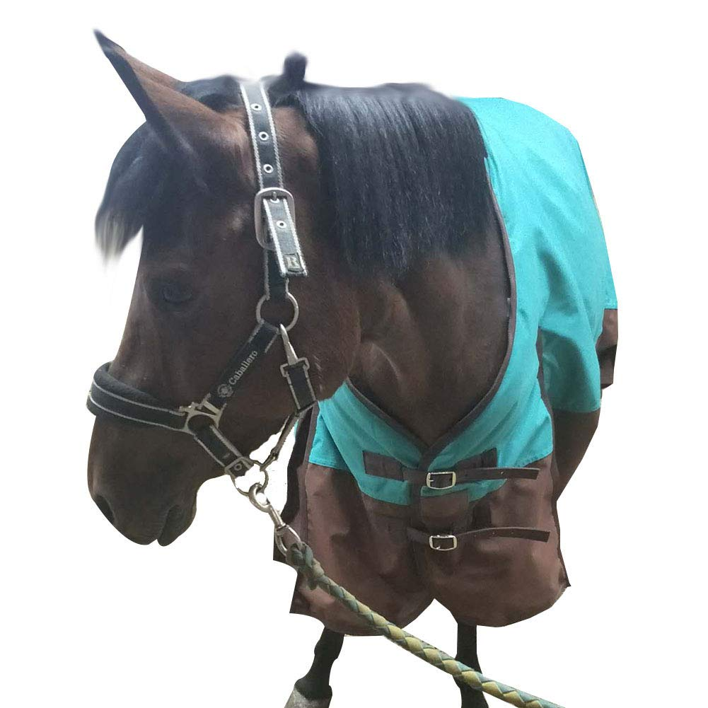 TGW RIDING 600 Denier Waterproof and Breathable Horse Turnout Sheet (68, Turquoise)
