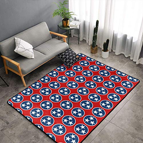 (LIN. Tennessee State Flag Area Rugs, Bedroom Livingroom Sitting-Room Rug, Doormat Floor Mat Standing Mat, Baby Children Play Blanket Tub Shower Bath Rug, Throw Rugs Carpet)