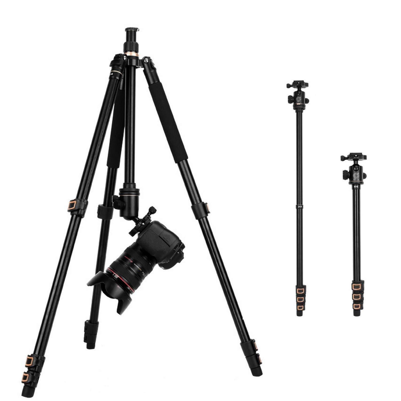 新作人気 三脚ビデオカメラ超軽量3Way雲台 水準器付き小型撮影記念撮影動画 B07QNNSF6C B07QNNSF6C, kireio:4d279c84 --- martinemoeykens.com