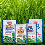 BioAdvanced 704840B 3 in 1 Weed and Feed for