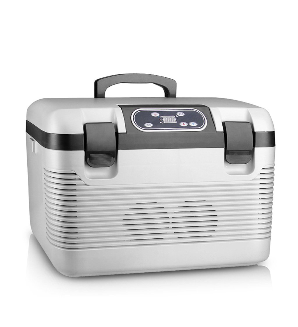 LIQICAI 19L Kühlbox Elektrische Coolbox 12V DC 220V AC Elektrische Kühlbox Kühler DC/AC Elektrische Warm/Cool Box