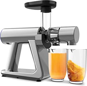 Juicer Machines, ZUUKOO Slow Masticating Juicer, Cold Press Extractor with Reverse Function & Quiet Motor for Vegetables and Fruits, Easy to Assemble, Disassemble and Clean, with Brush (Gary)