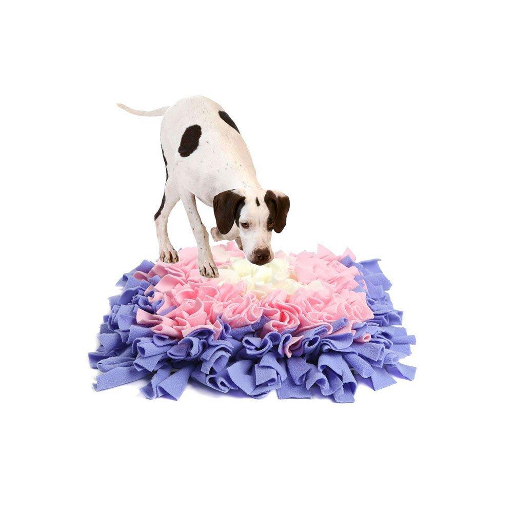 HongyH - Alfombrilla de entrenamiento para perros (2 patrones, colchón de entrenamiento para gatos): Amazon.es: Productos para mascotas