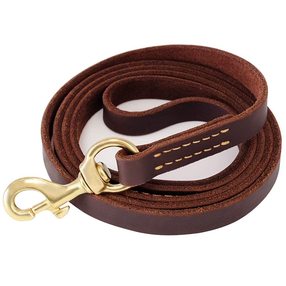Fairwin Leather Dog Leash 6 Foot - Best Dog Training Leash Heavy Duty for Large Medium Small Dogs (5/8'', Brown) by Fairwin