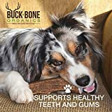 "Elk Antler Dog Chews by Buck Bone Organics, All Natural Healthy Chew, 4.5-5"" Split Antler For Medium Dogs, From Montana Elk, Made in USA"