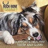 "Elk Antler Dog Chews by Buck Bone Organics, All Natural Healthy Chew, 4.5-5"" Split Antler For Medium Dogs, From Montana, Made in USA - MEDIUM SPLIT"