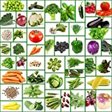 1000 tomatoe seeds - 45 Varieties of All Natural Vegetable Seeds-Non Hybrid-Non GMO Seeds-Heirloom Seeds-Carefully Selected Varieties To Provide a Well Balanced Healthy Diet. No Garbage (Filler) Seeds-Packed in Mylar Bag
