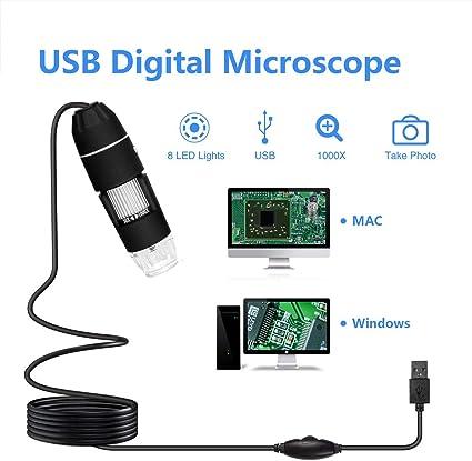 Caroline Philipson 0.3MP USB Microscopio 500X Negro//1000X 1000X port/átil del endoscopio de la c/ámara de Zoom con la Lupa 8 LED Luz Electr/ónica Digital microscopios