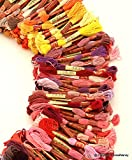 Hand Embroidery Thread 447 Skeins Rainbow Color