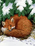 Caroline's Treasures ASA2044GF Fox Nap Time Garden Size Flag, Small, Multicolor For Sale