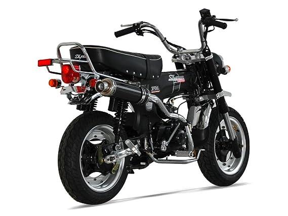 Moto Dax 50 - SkyTeam - Limited - Color negro mate - 2018: Amazon.es: Coche y moto