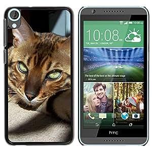 PC/Aluminum Funda Carcasa protectora para HTC Desire 820 Bengal Savannah Cat Crazy Eyes Sunlight / JUSTGO PHONE PROTECTOR