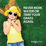 MegaGrass 20''W x 59''L Artificial Grass for Lawn and Landscaping Outdoor or Indoor Green Faux Fake Grass Decor | 8 SqFt 1.6'' Tall Blades 50oz Face | Realistic Artificial Grass Mat Rug Pad Carpet Turf