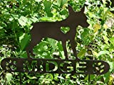 Miniature Pinscher Personalize Pet memorial Garden Stake Dog