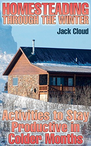Homesteading Through the Winter: Activities to Stay Productive in Colder Months: (Winter Homestead, Farming) by [Cloud, Jack ]