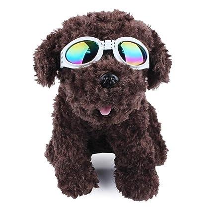 Anteojos para mascotas Gafas de sol para perros pequeños ...
