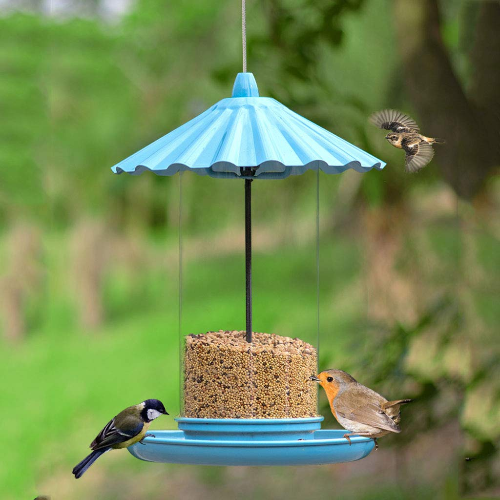LLDDP Birdcage Round Bird Feeder Outdoor Bird Feeder Villa Garden Bird Supplies FeederFeeders Friends and Family Great Gifts Bird Feeder