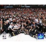 Photo File Anaheim Ducks Stanl