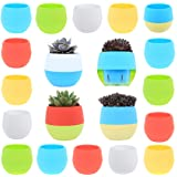 DeElf 15 Pack Small Succulent Pots 3 Inch Plastic Mini Planters with Drainage for Window Wall, Bulk