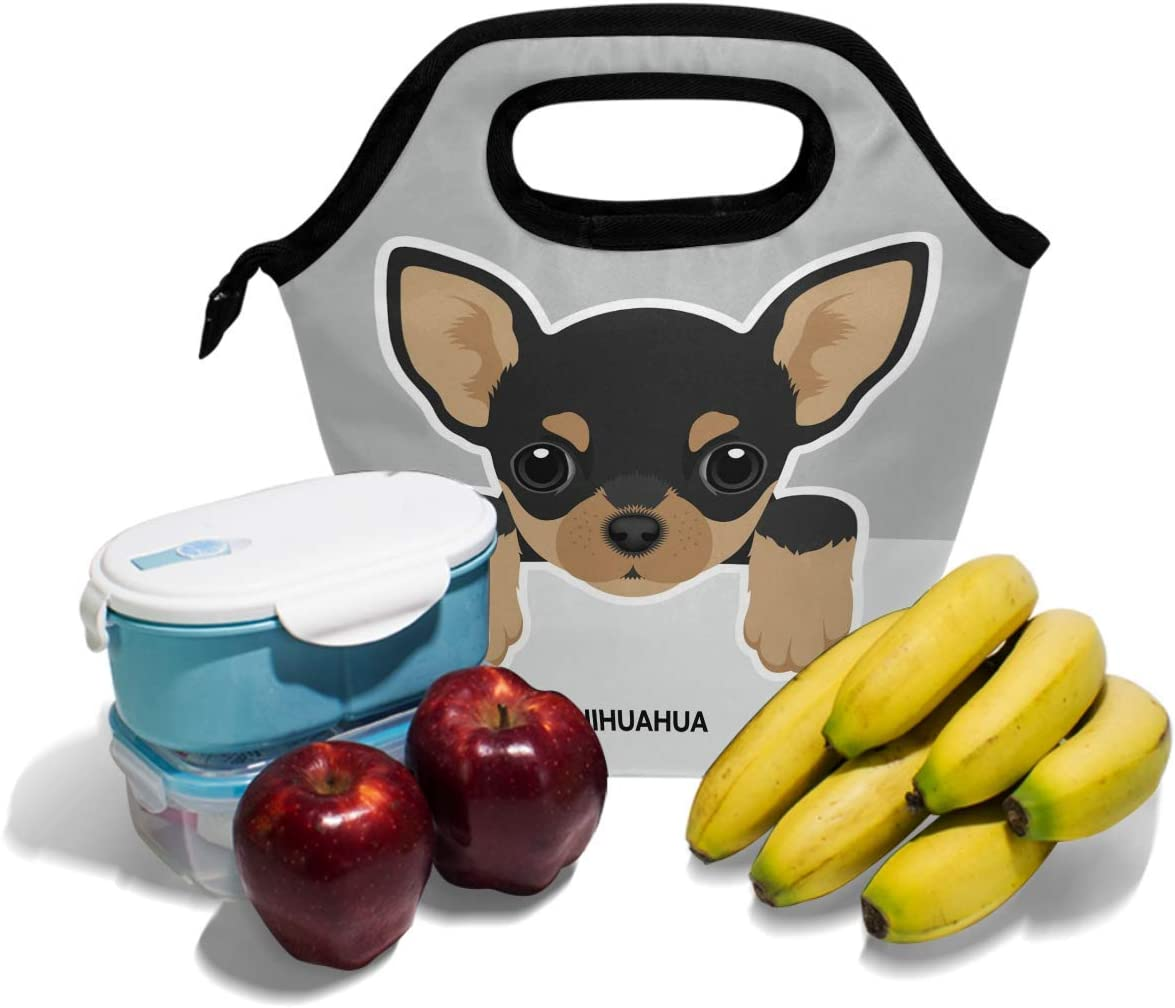 Onled Chihuahua Dog Lunch Bag Insulated Freezable Cute Puppy Lunch Tote Cooler Handbag Lunch Box for Women Men Picnic Travel Portable Lunch Kit Reusable
