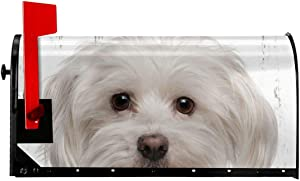 Canvas Maltese Puppy Dog Summer Magnetic Mailbox Cover Garden Patio Home Decoration for Exterior One Size 21x18 Inch(21x18 in)