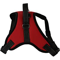 colorofthewind No-Pull Dog Harness Outdoor Adjustable Breathable Safety Pet Vest for Small Medium Large Dogs