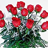 12 Red Roses - I Love You