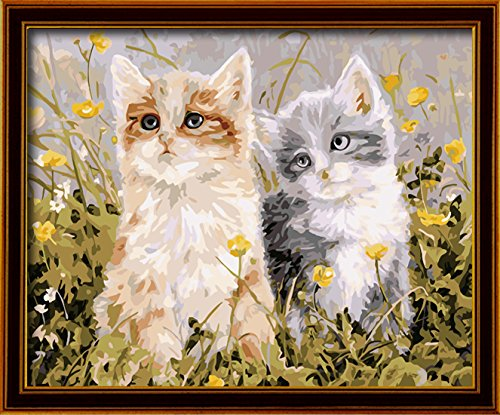 paint by numbers Two lovely cat 16-by-20 inches Frameless.