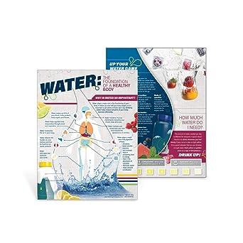 Amazon.com: Importance of Water Educational Handout Tearpad ...