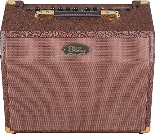 Luna Acoustic Ambiance Acoustic Electric Guitar Amp Combo, 25 Watts (Acoustic Amps Combo Electric)