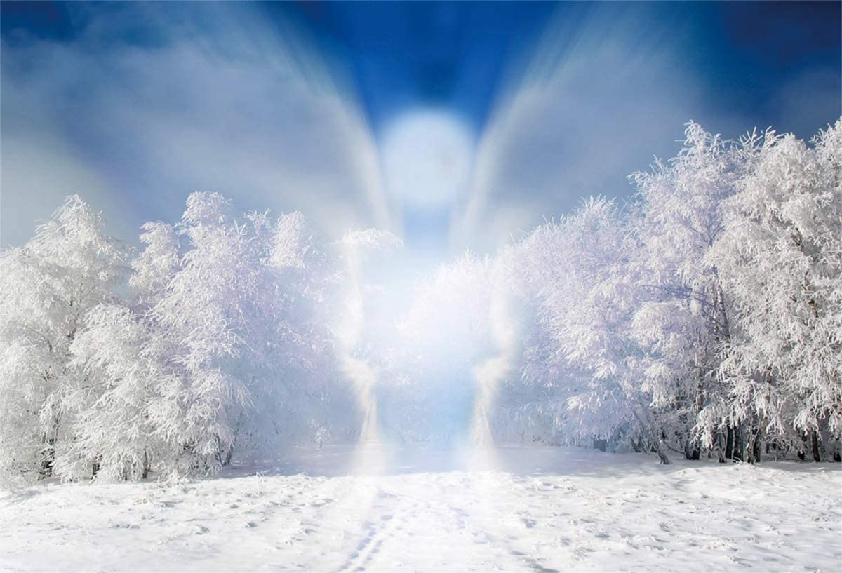 YEELE Winter Landscape Backdrop White Snow Angel Appearance Photography Background 10x8ft Selfies Portrait and Holiday Pictures Photoshoot Christmas Events Photos Props Wallpaper