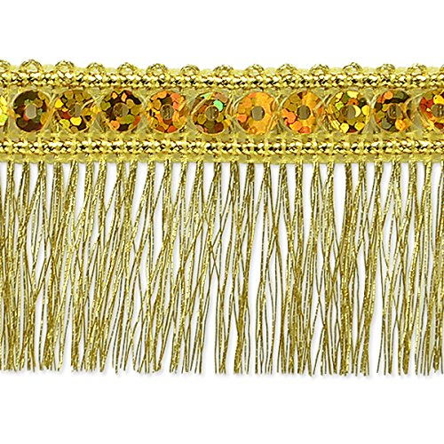 Expo International Esther Sequin Metallic Fringe Trim Embellishment, 10-Yard, Silver IR6965SL-10