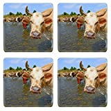 MSD Square Coasters IMAGE ID 20861100 Cows on a watering place