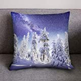 LENXH Christmas hug pillowcase fashion pillowcase office pillowcase polyester pillowcase 4545cm